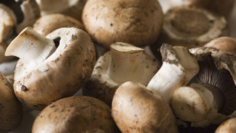 Dieta cu ciuperci te ajuta sa scapi de kilogramele in plus