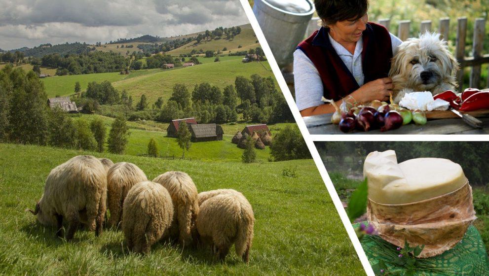 Prin Marginimea Sibiului, pentru o Transilvanie Gastronomica